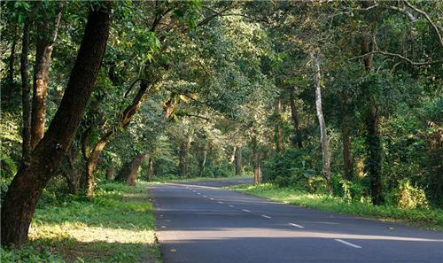 National Highway 31 passes through Kishanganj city to link this place with West Bengal & Northeastern states with Bihar