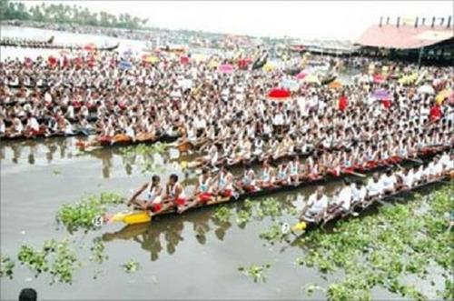 Traditional Festival in Kochi