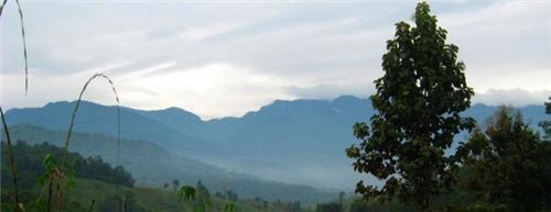 Geography of Kohima