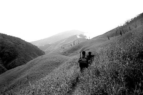 Trekking in Dzukou Valley