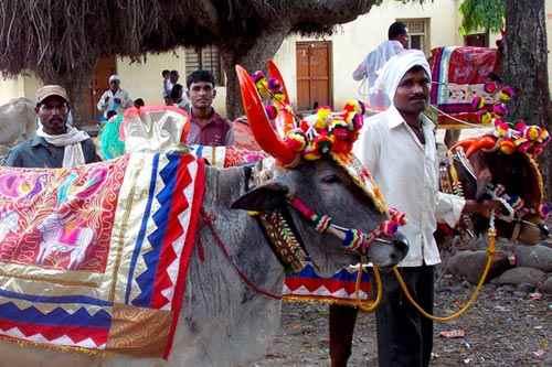 Festivals in Korba
