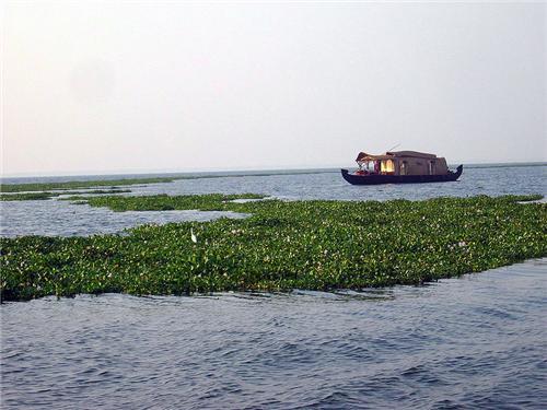 Nattakom Tourist Place Kottayam