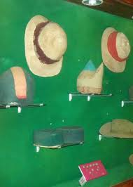 Artifacts in Pazhassi Raja Museum