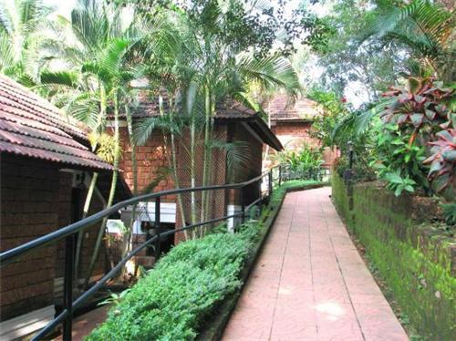 Spa in Kozhikode