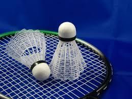 Badminton in Kullu