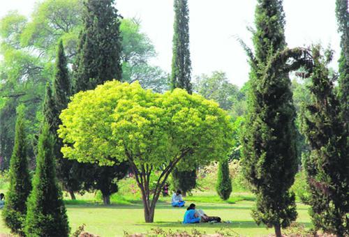 Parks in Kurukshetra
