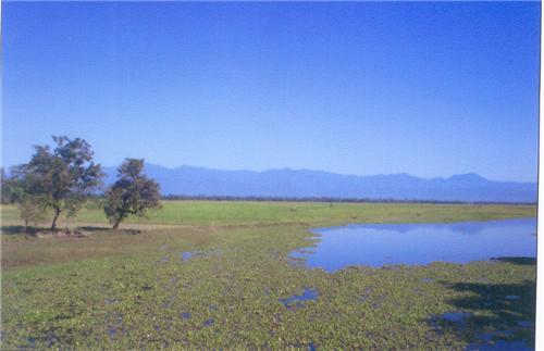 Bordoibam Sanctuary