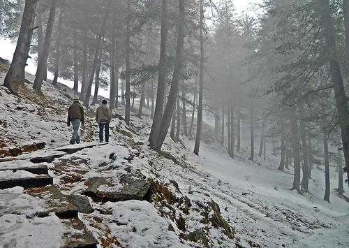 Way to Bijli Mahadev Temple