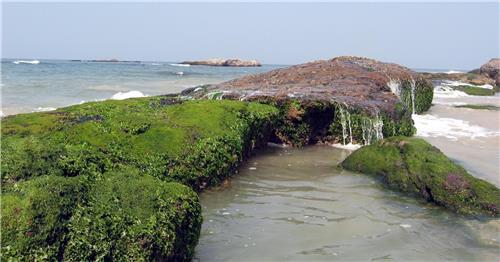 Someshwara Beach in Mangalore