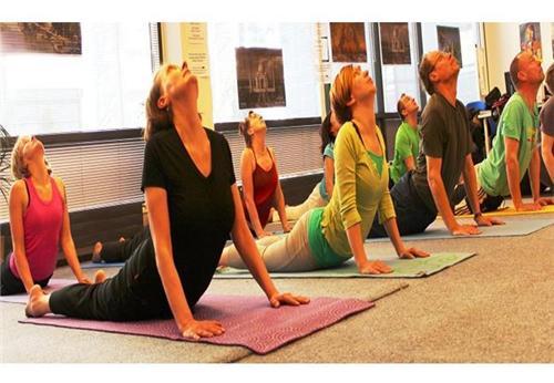 Yoga in Moga