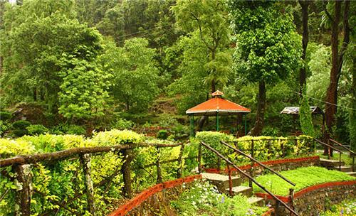 Municipal Garden Picnic Spot in Mussoorie
