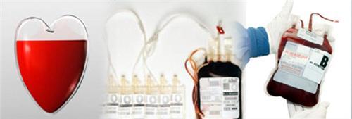 Blood Bank in DDMM Heart Institute