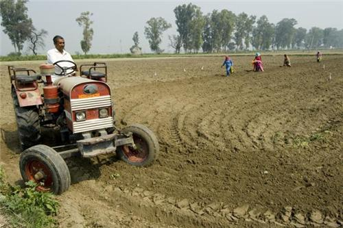 Agrarian Economy in Neemuch