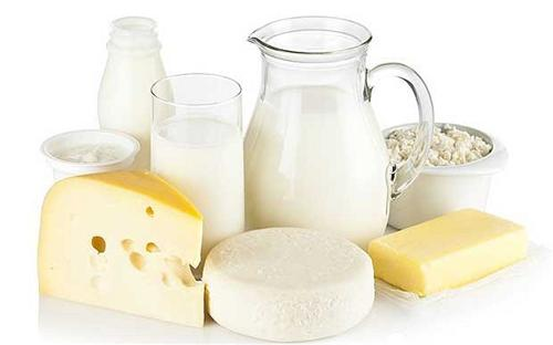 Dairy Retailers in Palwal