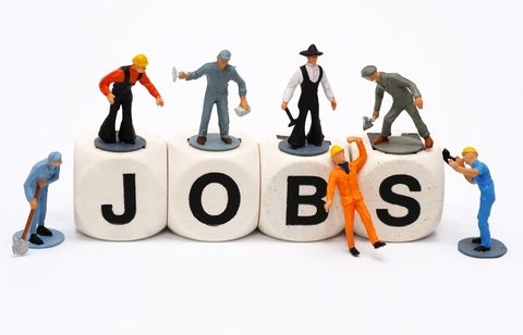 Placement Services in Palwal