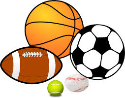 Sports in Palwal