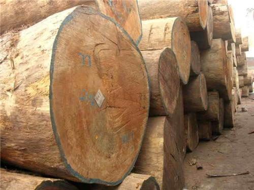 Timber Imported from Himachal pradesh