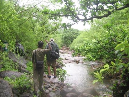 Things to do at Barda Wildlife Sanctuary