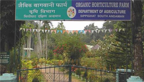 The Sippighat Agricultural Farm Entrance