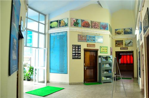 Zoological Survey of India Museum of Port Blair