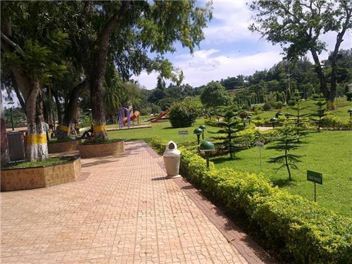 The Picnic Lawn surrounding the Marina Park