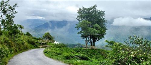 Arriving   Darjeeling