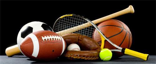 Sports Goods Dealers in Raipur