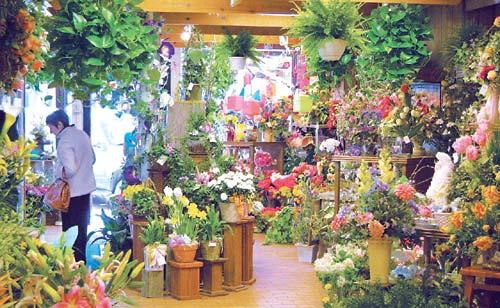 Florists in Rajkot