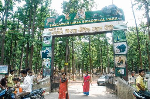 How to reach Bhagwan Birsa Biological Park in Ranchi