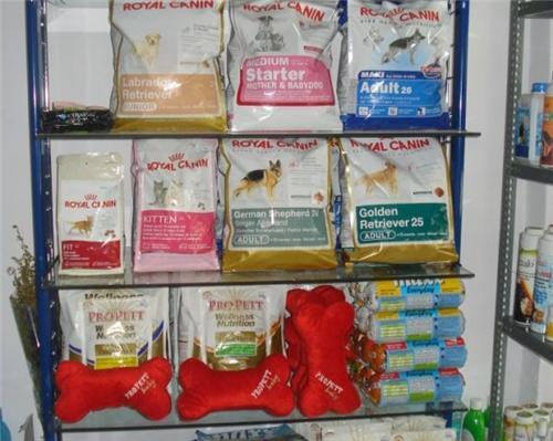 Pet shops in Ranchi