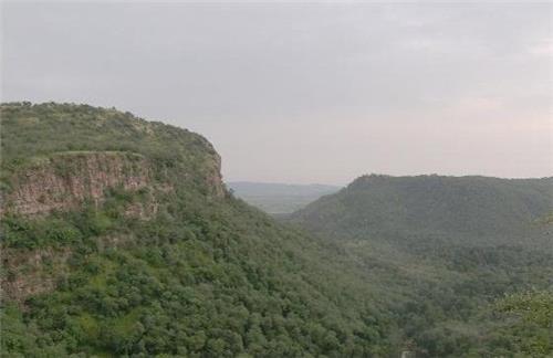 Sawai Mansingh Sanctuary Sawai Madhopur