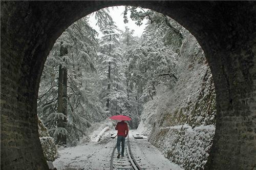 Shimla & Its Walks