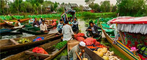 Places to Explore in the Dal Lake on a Shikara