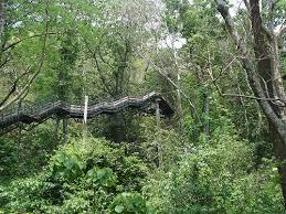 Thenmala-Ecotourism