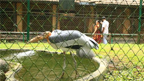 Thrissur Zoo Timings