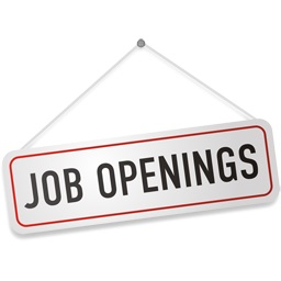 Vijayawada Job Consultants