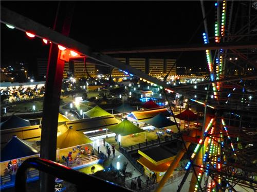 Yazoo Park at Night