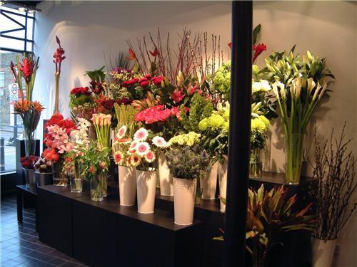 Florists in Warangal