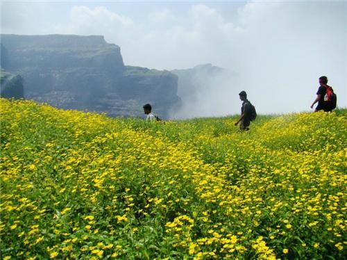 Trekking Spots in Ahmednagar