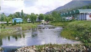 Activities at Kokernag