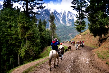 What to do in Anantnag