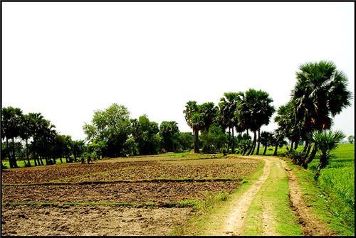 Village in Barddhaman