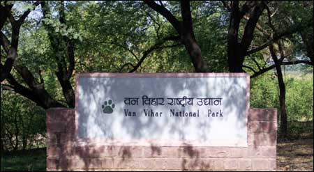 National Parks in Bhopal
