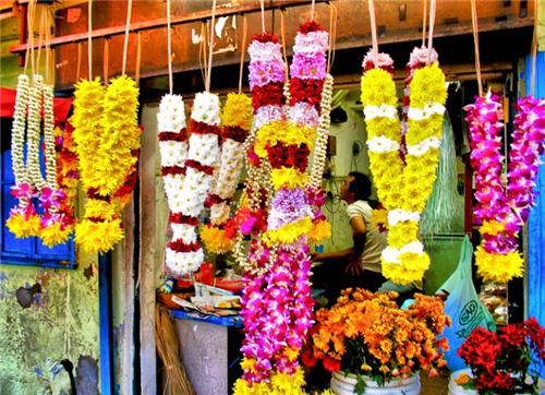 Florists in Bijiapur