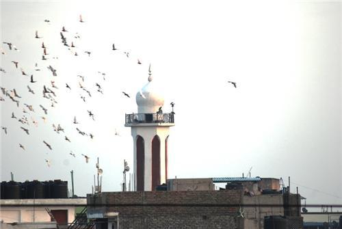 Religious Places in Bulandshahr