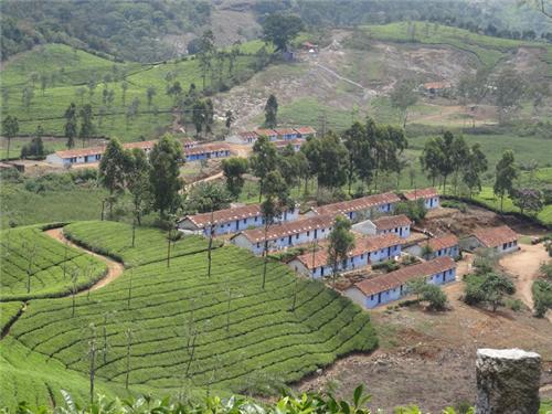 Hill Station near Coimbatore