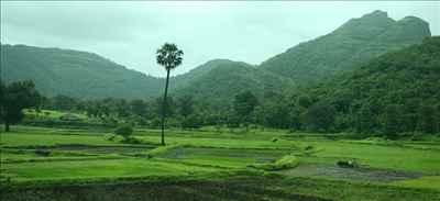 Dadra and Nagar Haveli