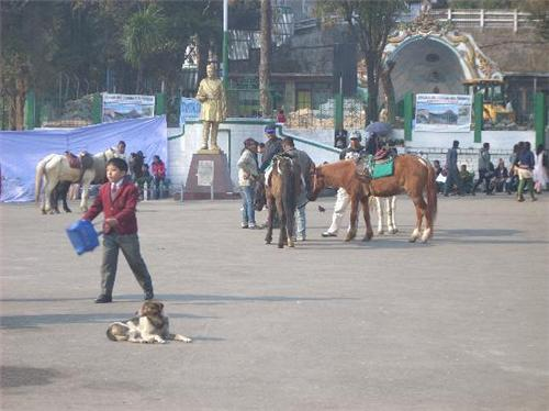 The Mall and the Statue of Bhanubhakt