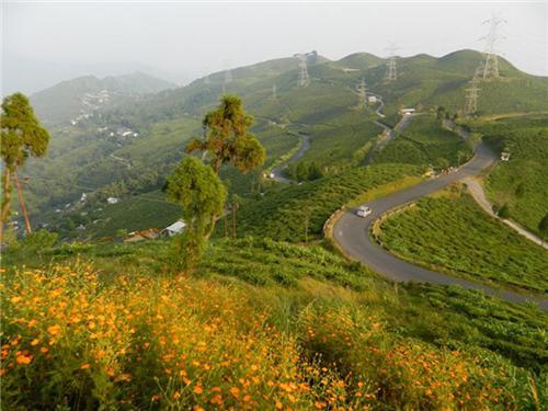 Network of Roads in Darjeeling