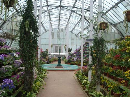 Lloyd Botanical Garden in Darjeeling